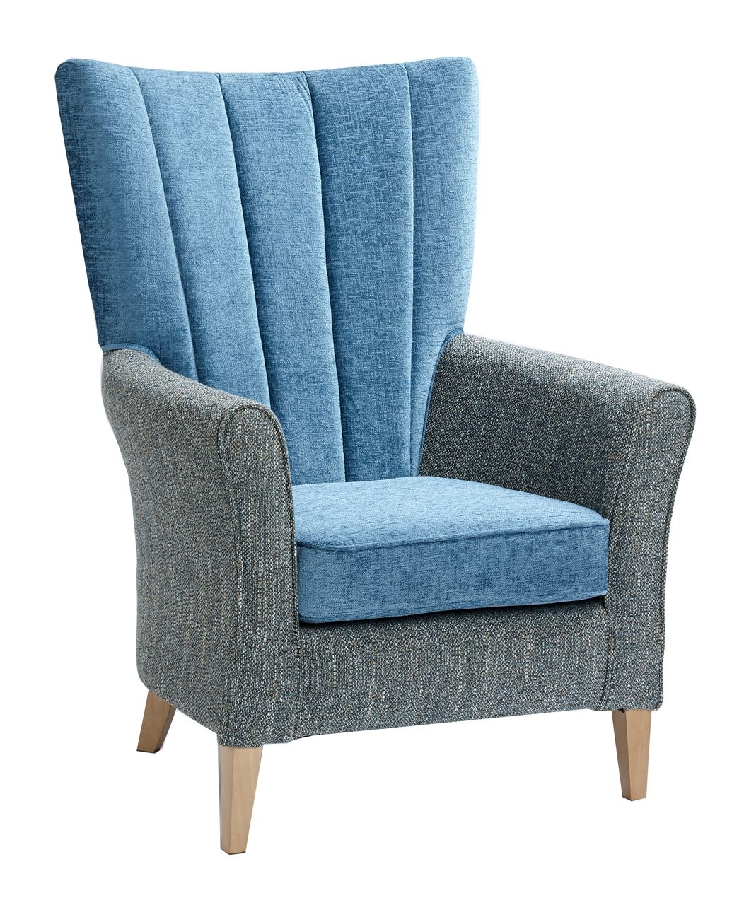 Fantastic Broxton High Back Armchair Renray Healthcare Beatyapartments Chair Design Images Beatyapartmentscom